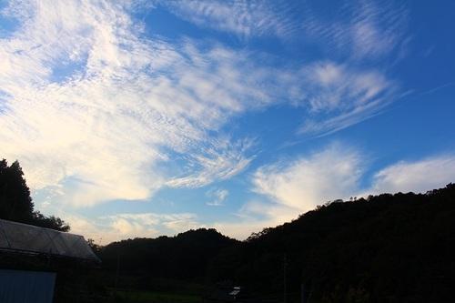 2016_10_18_0238.JPG