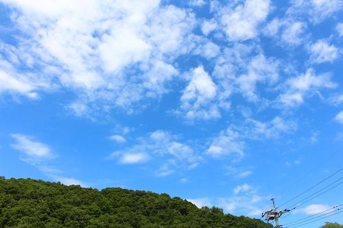 2017_07_26_9190.JPG