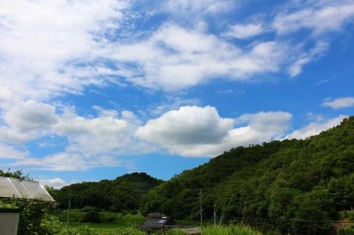 2017_07_26_9191.JPG